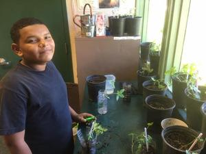 student standing next to plants in containers on a shelf