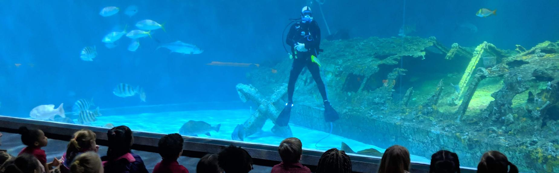 students sitting on floor in aquarium watching a diver in a tank