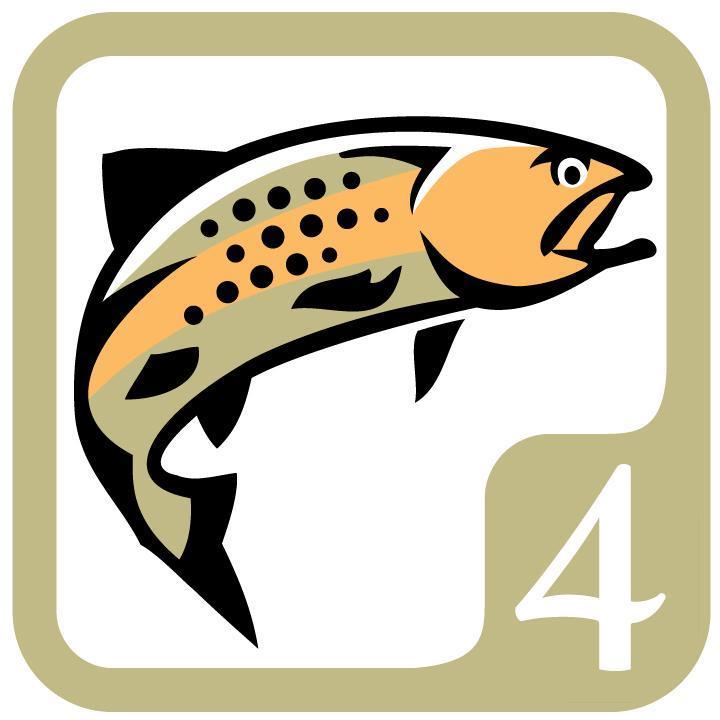 4 Trout Icon