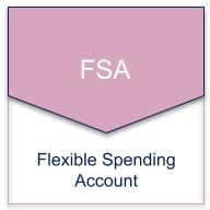 fsa igoe flexible spending account