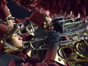 Falcon Band