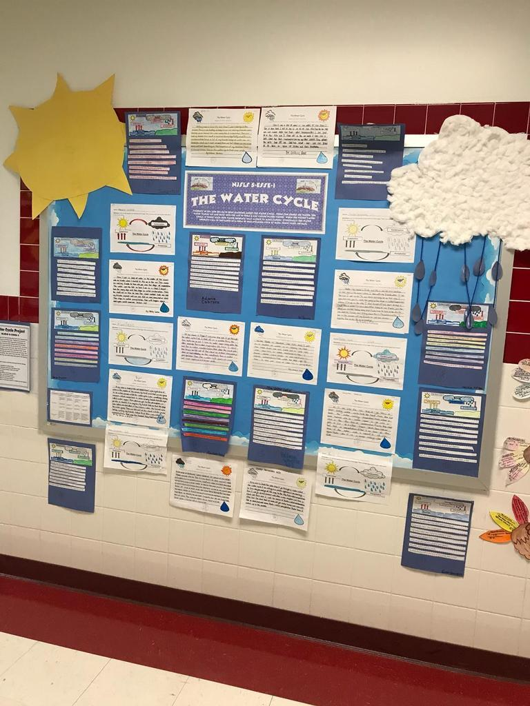the water cycle, science bulletin board