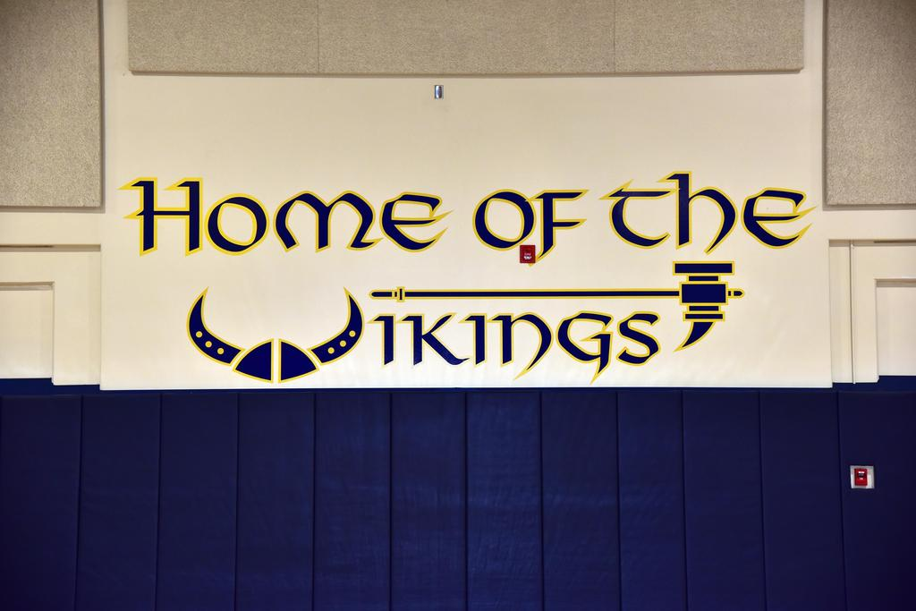 Home of the vikings