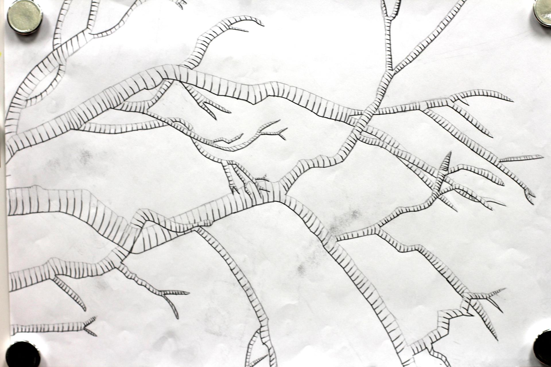AHS Art line drawing of tree branches