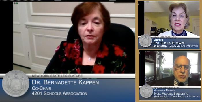 Dr Kappen giving testimony