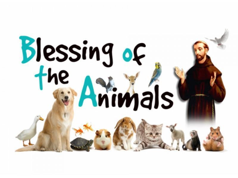St. Francis: Blessing of the Animals - 10/4 Featured Photo