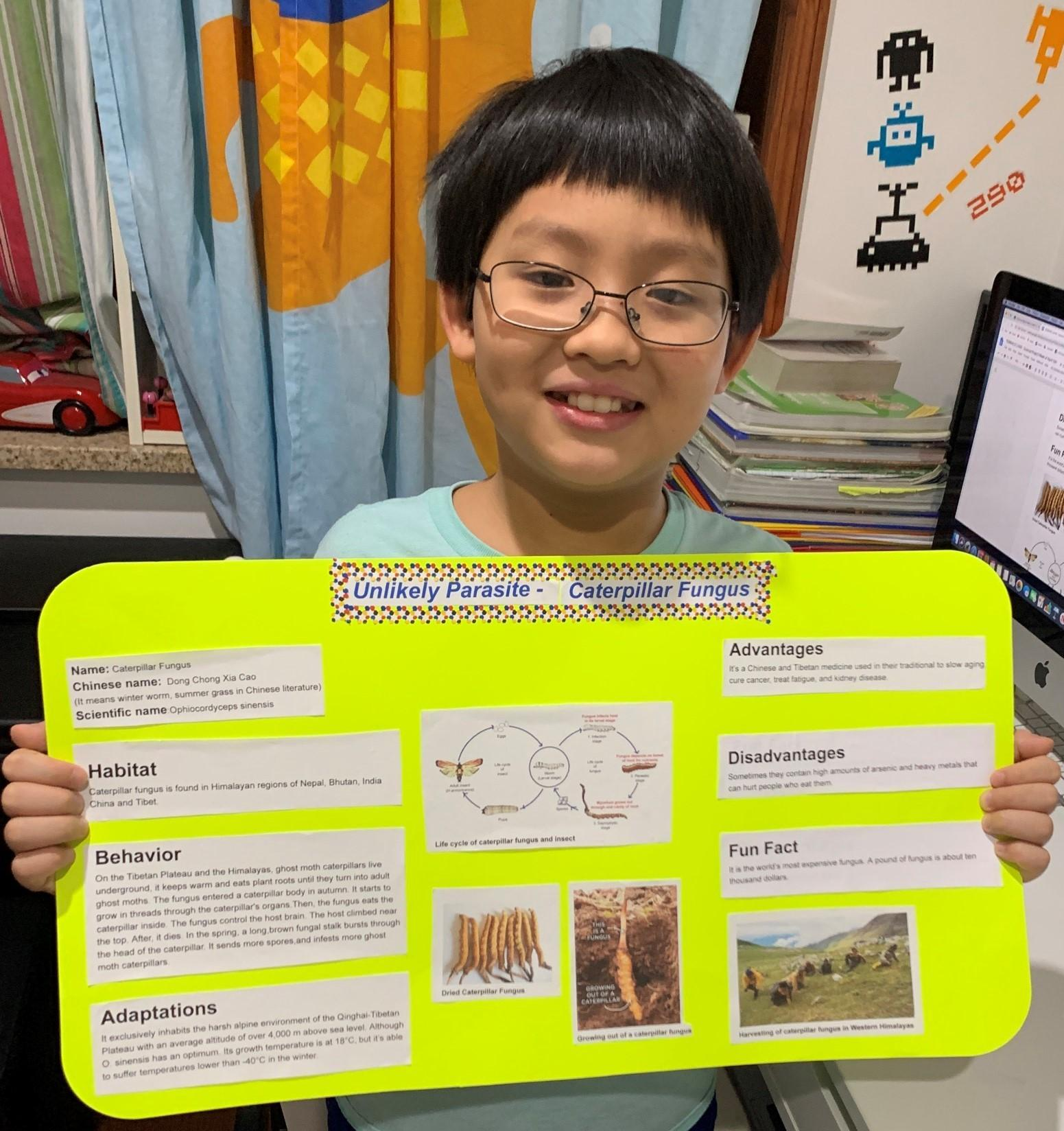 Student in his room during remote learning. He is holding a poster display of his science project on parasites.