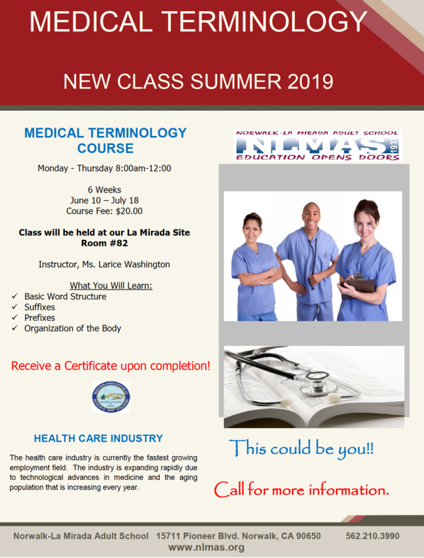 Medical Terminology for Summer 2019! Featured Photo