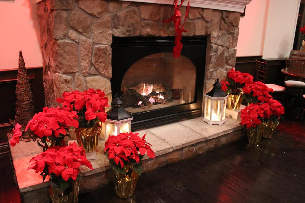 Fireplace with poinsettias and burning logs