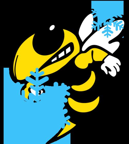 FASD BEE SNOW