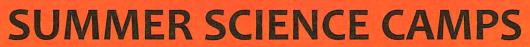 YSI Summer Camp logo
