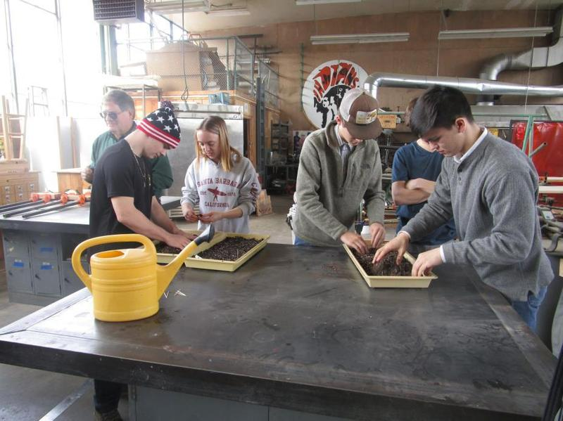 Students at the Sustainability Institute