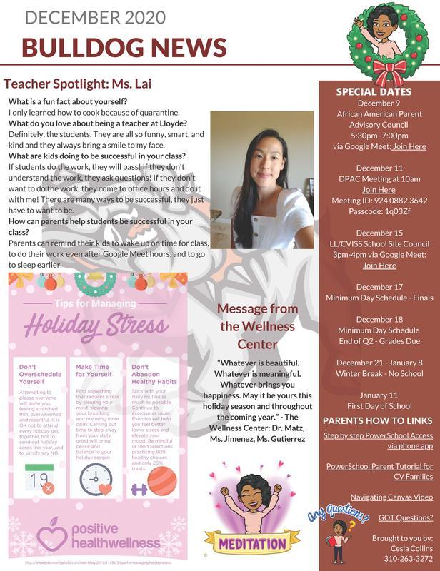 December 2020 Newsletter / Boletin de Noticias para Diciembre 2020