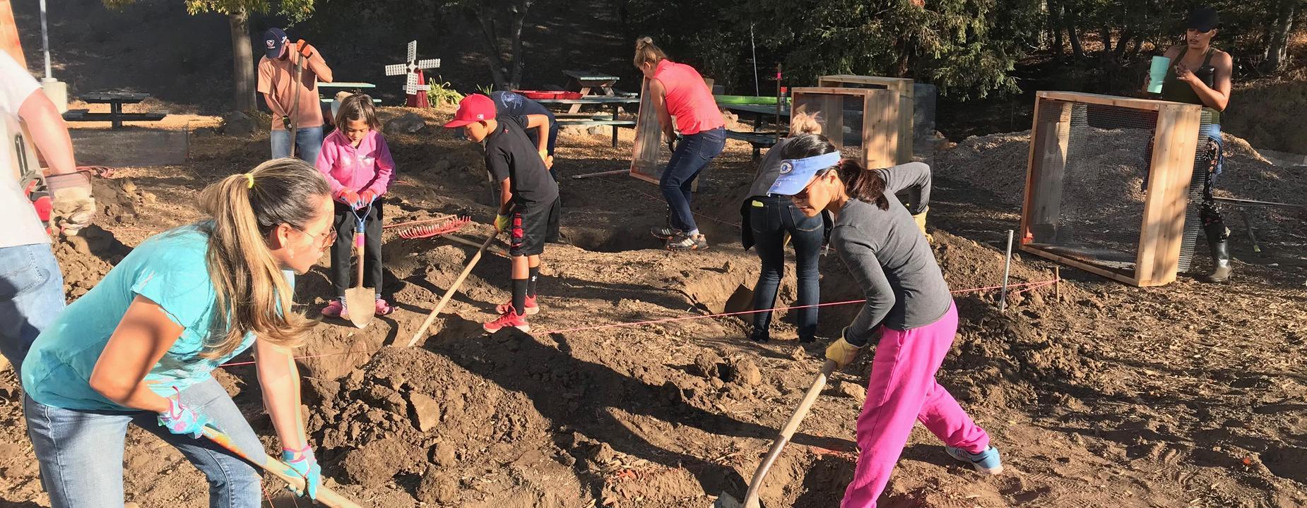 proctor school garden project