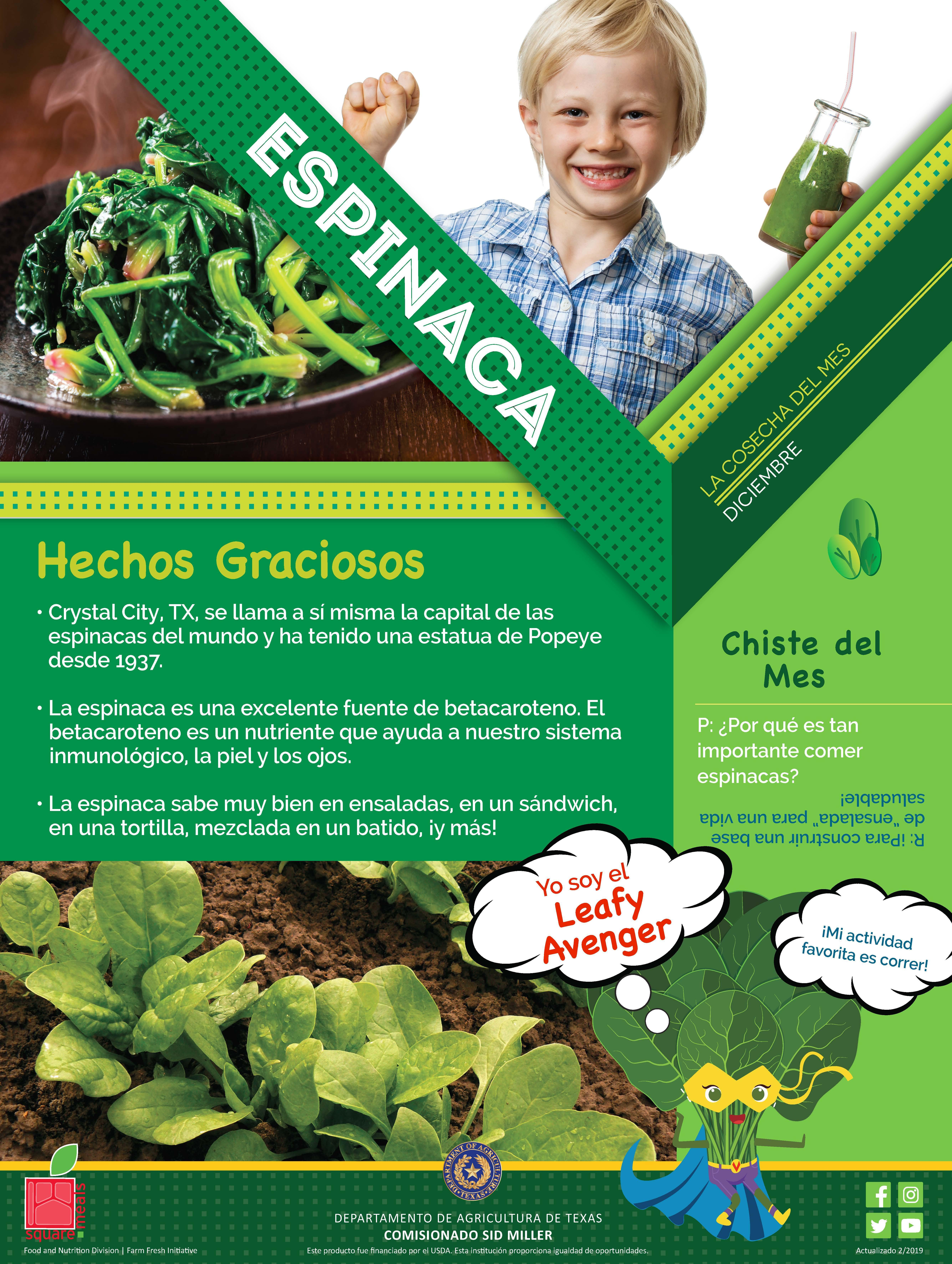 Spinach is the Harvest of the Month