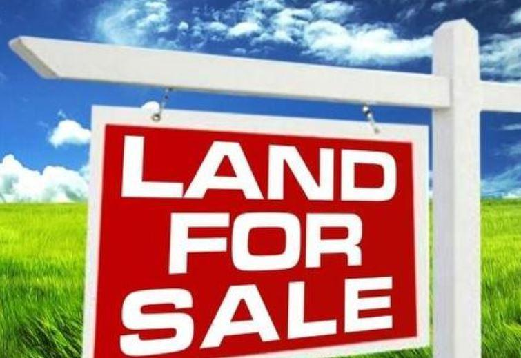 Two Lots for Sale Thumbnail Image