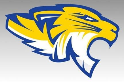 FISD Tiger Logo
