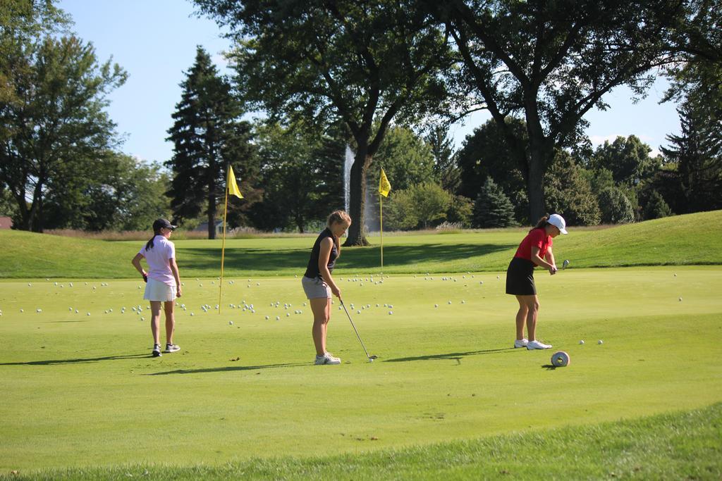 Three golfers putting on a green full of golf balls