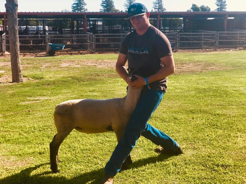 #BulldogSTRONG Student Spotlight KERN COUNTY FAIR EXCLUSIVE: Jacob Flaherty Thumbnail Image
