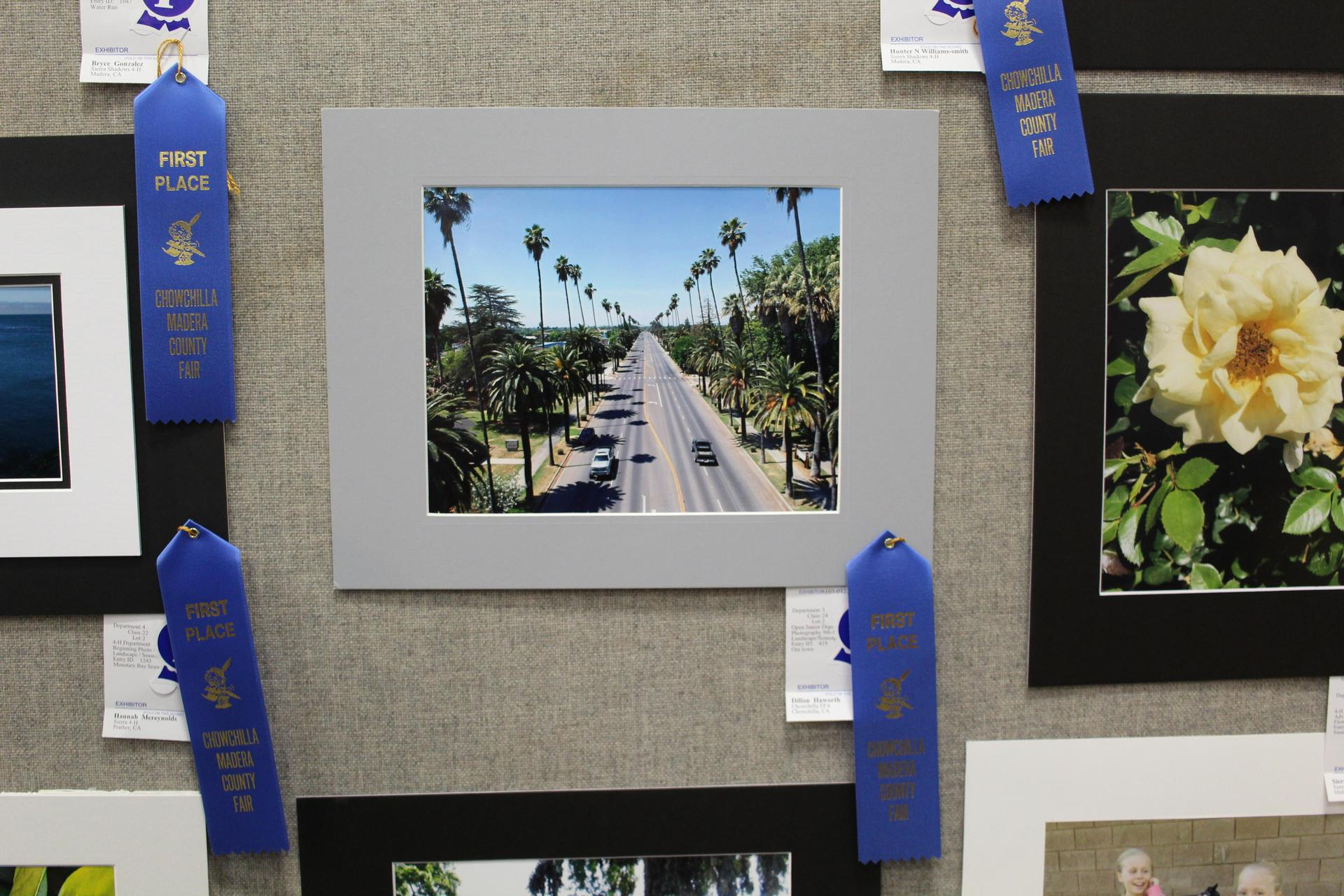 Student photography on display