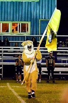 The Panther Mascot