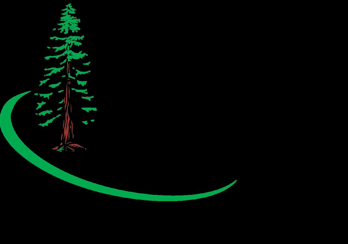 Niemes Logo