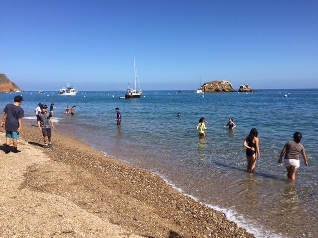 Catalina Beach Hiking
