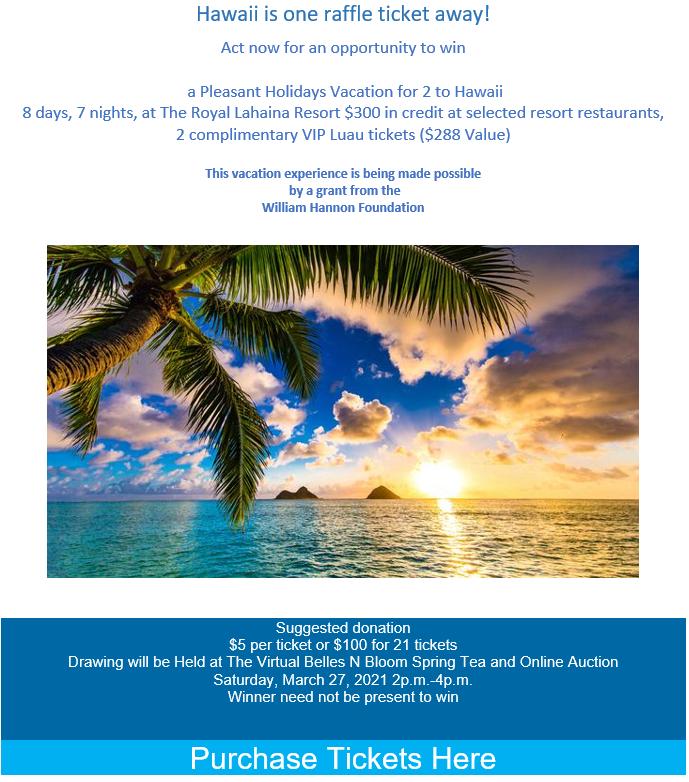 Hawaii Raffle 2021 Poster