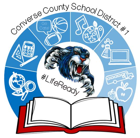 CCSD1 Logo