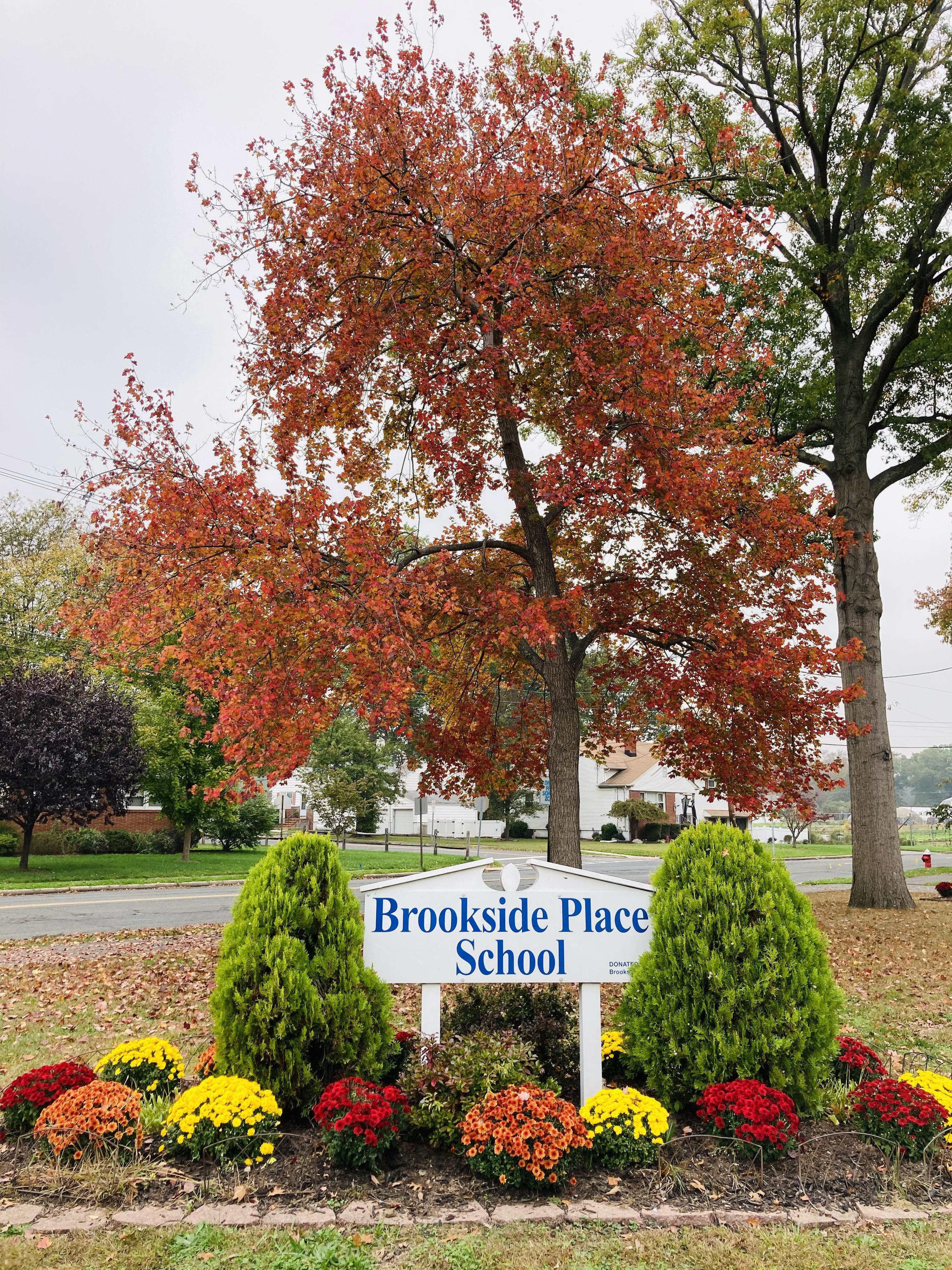 BPS School Sign with Autumn Tree