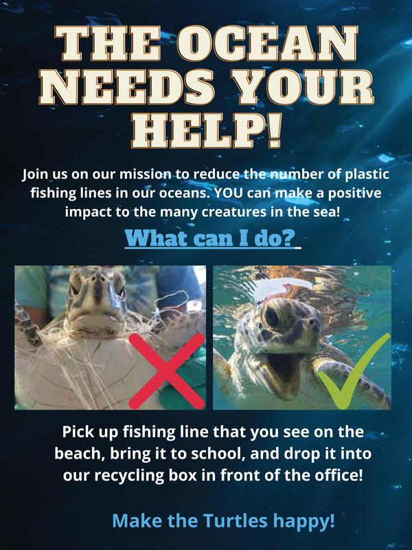 Bring fishing line you find on the beach to the office for recycling.