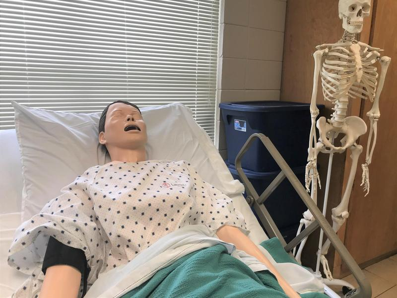 CHS Health Science Class New Mannequin