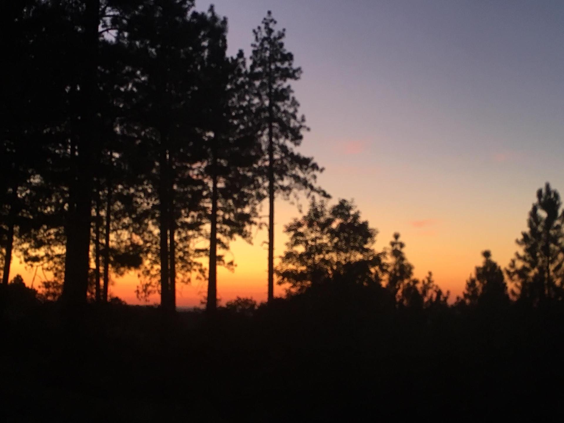 Sunset at Brice Station