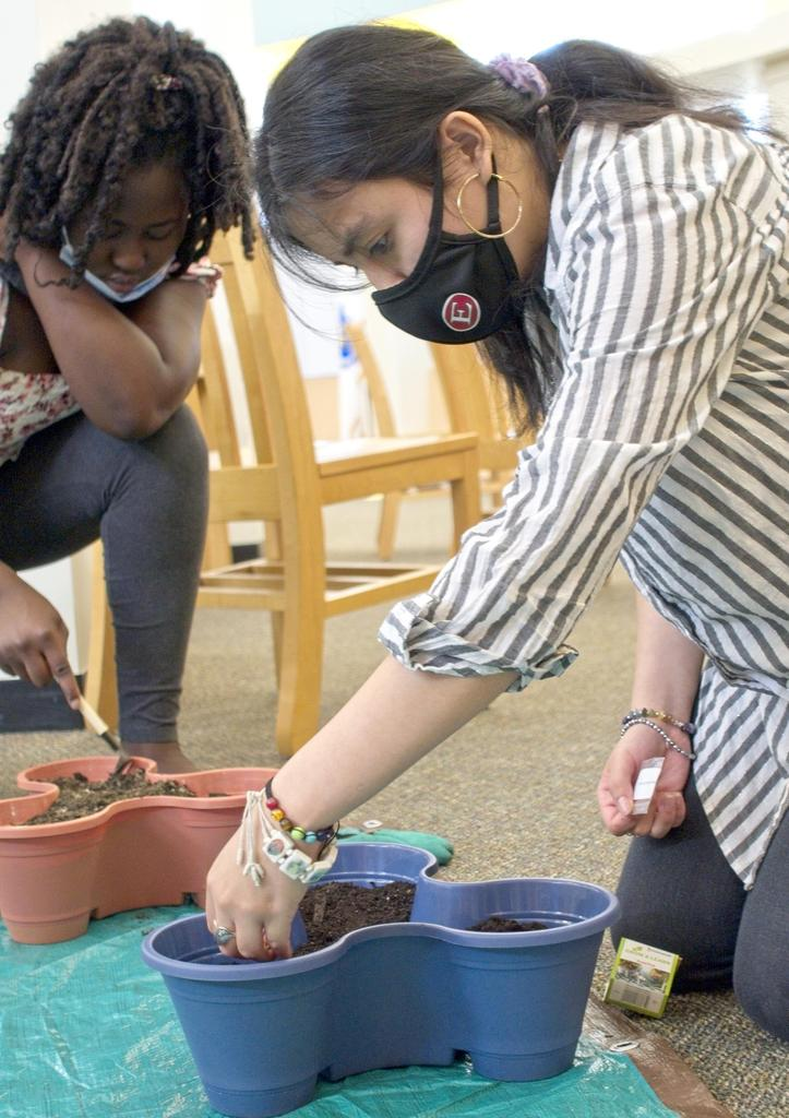 Two students plant something into a small container filled with soil