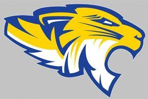 Frenship Tiger Head Logo
