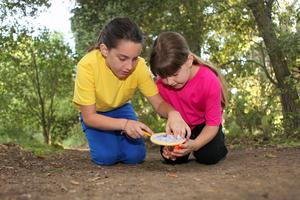 Students learning outdoors