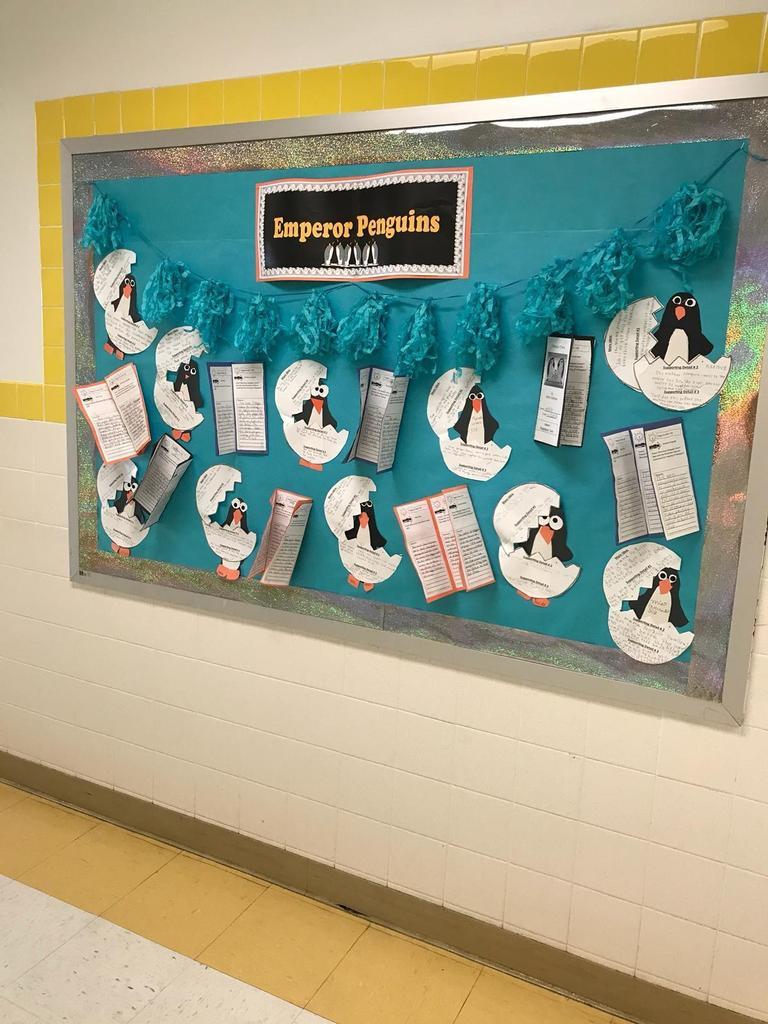 emperor penguin bulletin boards, penguins hatching from egg