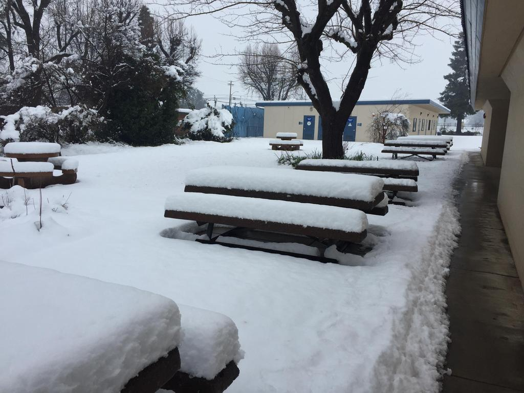 Snow Day Feb. 13, Pacheco West