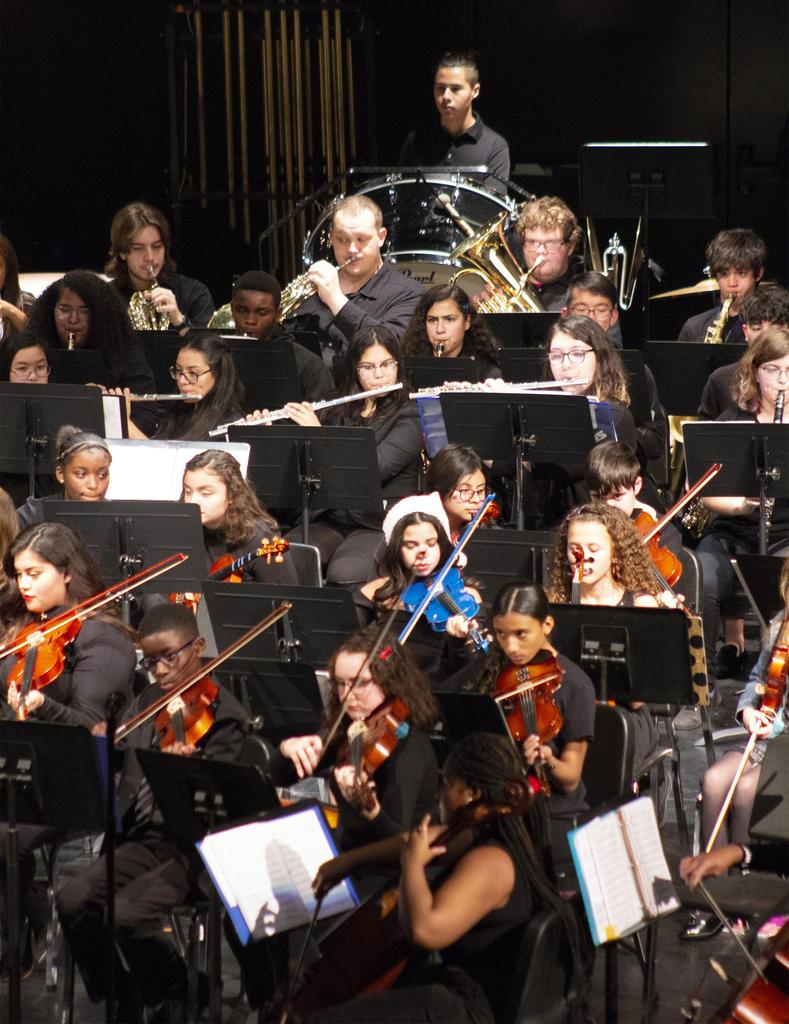 A horizontal view of a portion of the orchestra as they perform