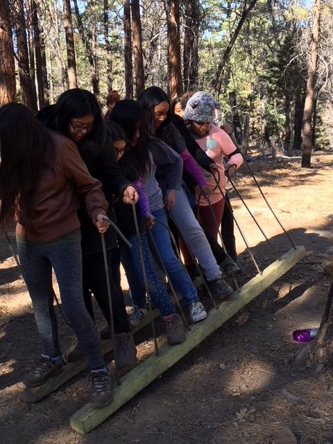 Team building students