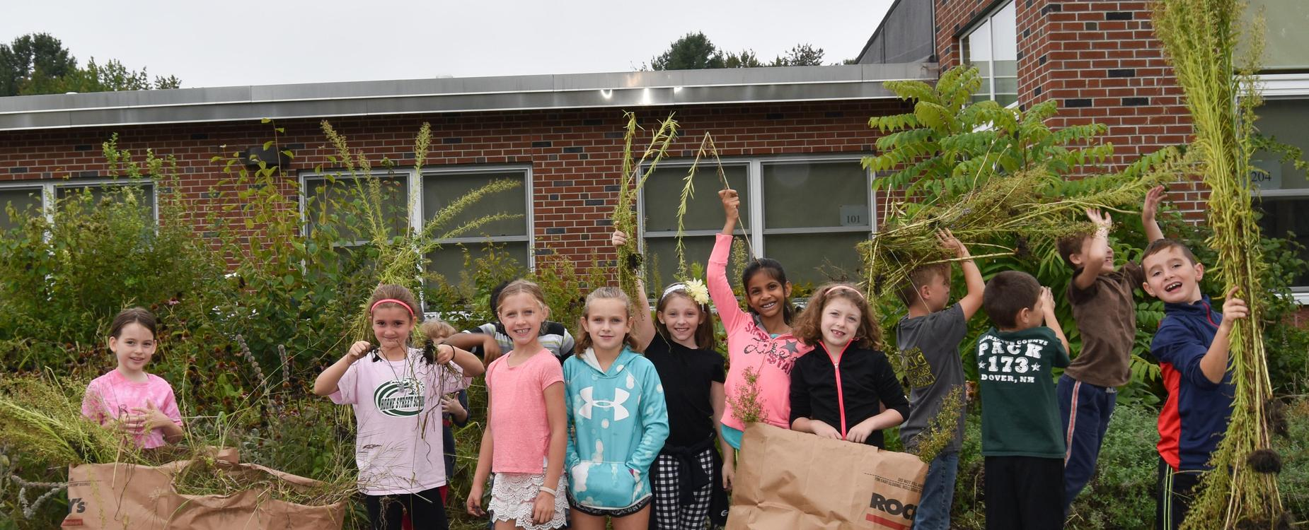 Students Weeding the Horne Street School Garden