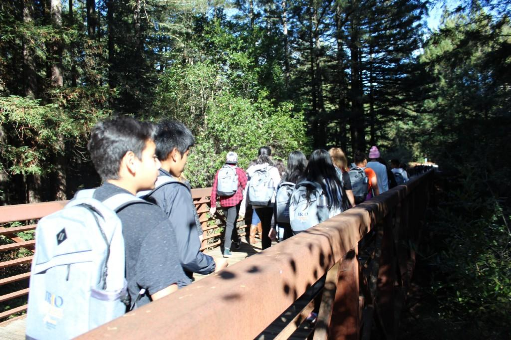 several students with backpacks on walking across a bridge with trees in the background