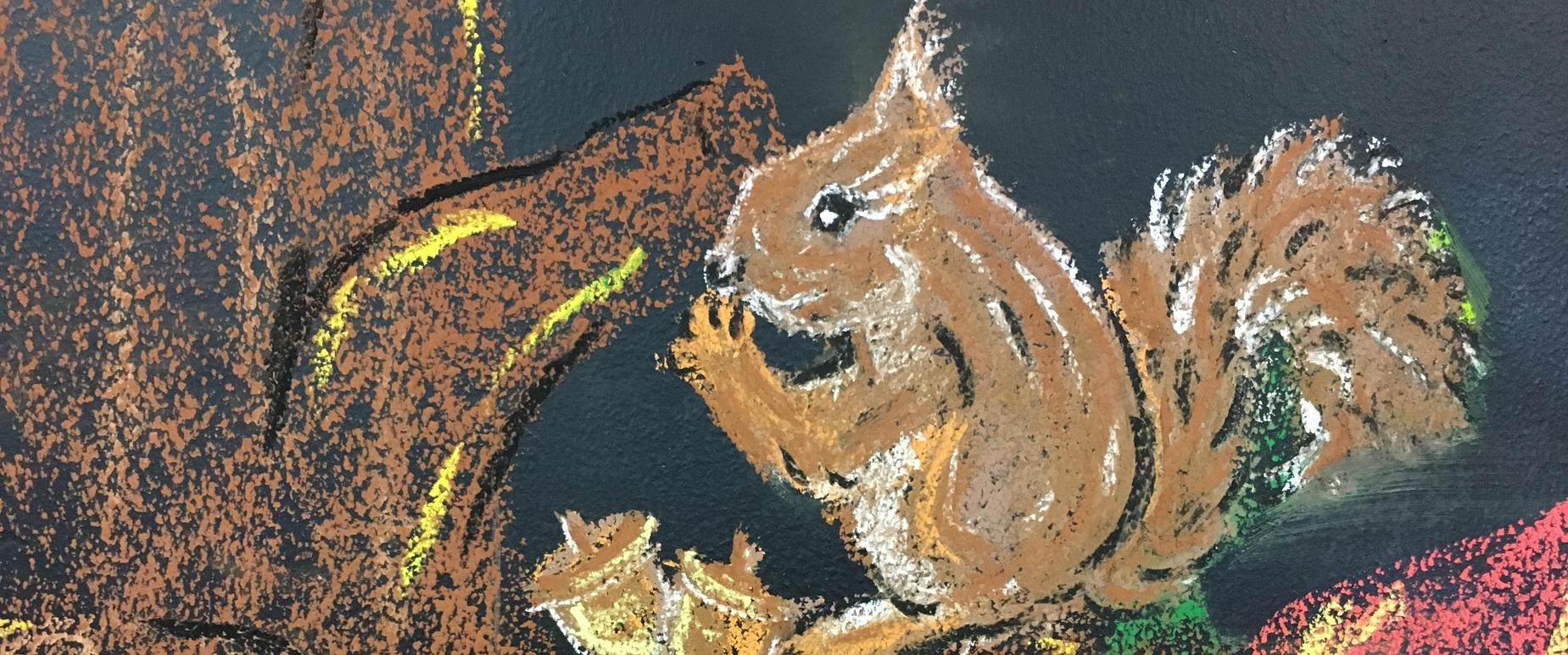 chalk board drawing. squirrel