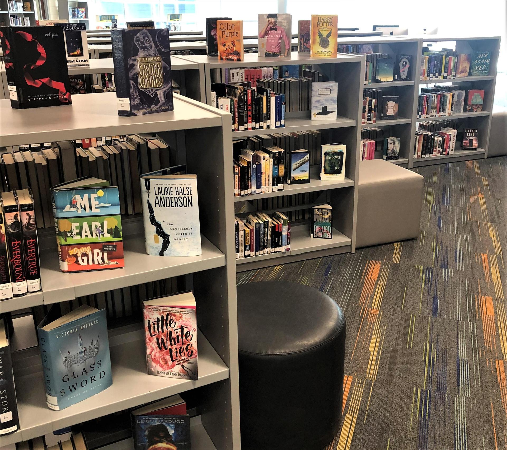 Staggered Bookshelves