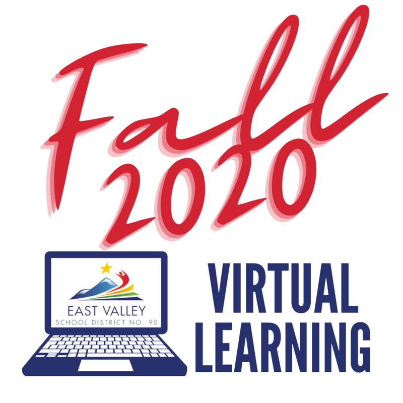 Fall 2020 Virtual Learning