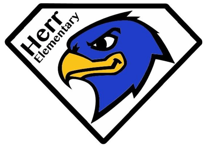 Skyhawk Logo