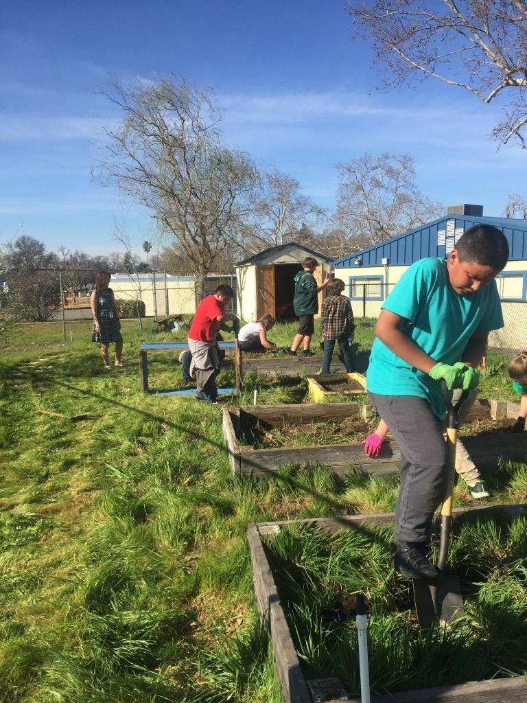 Students work in the garden