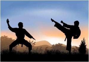 Two karate students in a strike pose with a sunset in the distance.