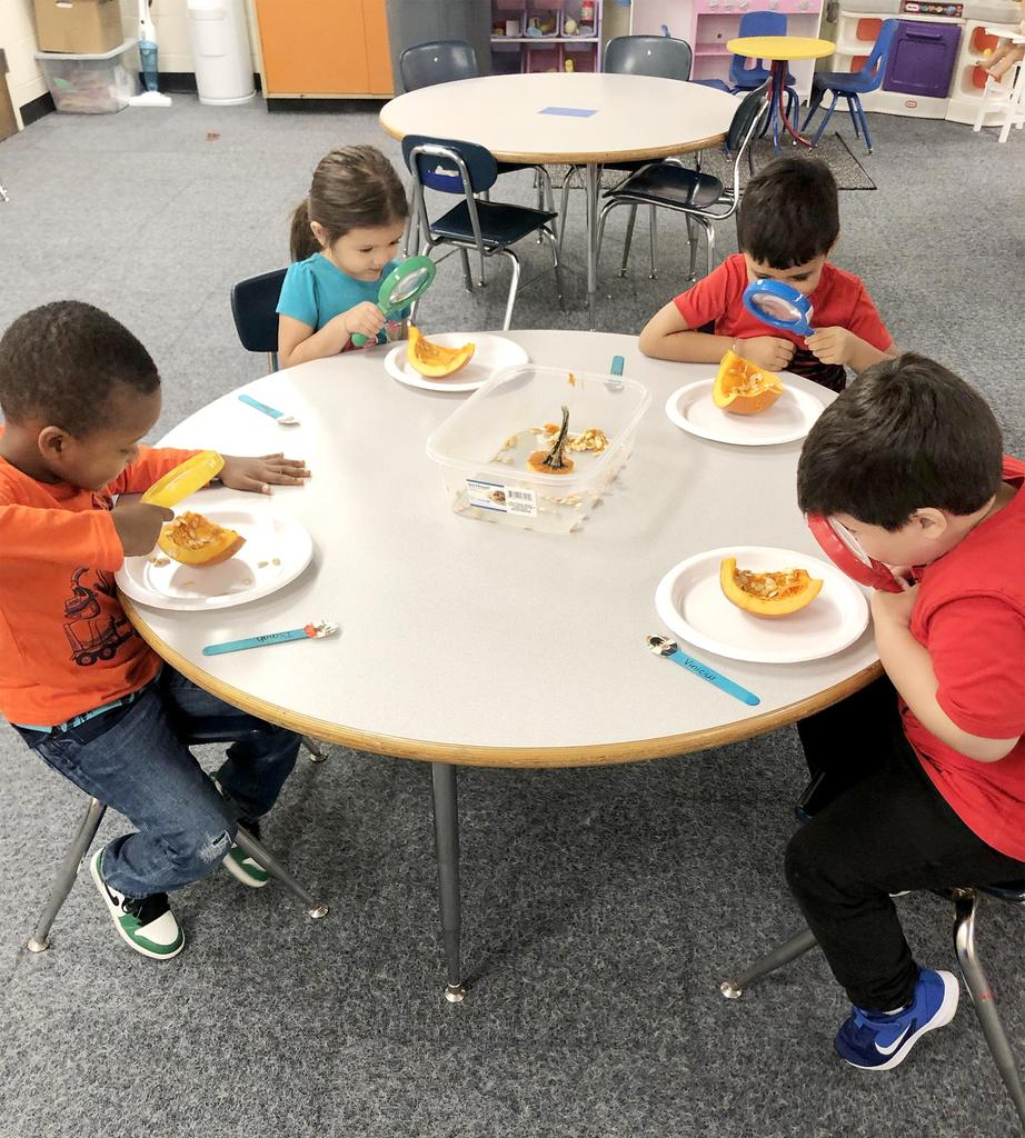 Four students sit at a round table and examine the insides of pumpkins