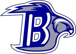Bayhawk Logo - Blue.jpg